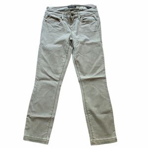 Level 99 Lily Crop Skinny Straight Petite Jeans
